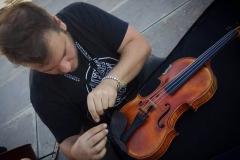 violin-ara